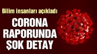 Corona virüsü raporunda dikkat çeken detay…