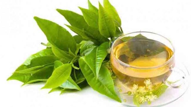 Defne yaprağı çayının faydaları!