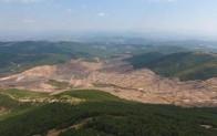 Tarım ve Orman Bakanlığından Kazdağları açıklaması…İşte kesilen ağaç sayısı