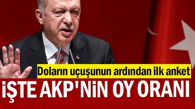 Doların uçuşunun ardından ilk anket: İşte AKP'nin oy oranı