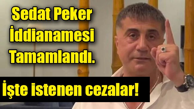 Sedat Peker iddianamesi tamamlandı… İşte istenen cezalar