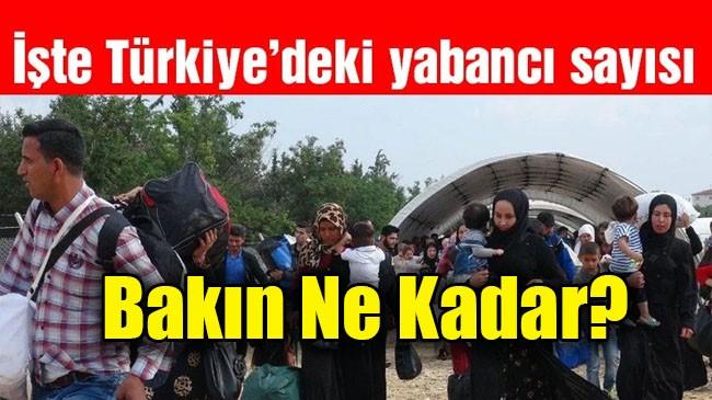 Türkiye'de kaç yabancı var, ne kadarı Suriyeli?